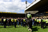 NORWICH, ENGLAND - MAY 16:  Stewards and police control fans after a pitch invasion during the Sky Bet Championship Playoff semi final second leg match between Norwich City and Ipswich Town  at Carrow Road on May 16, 2015 in Norwich, England.  (Photo by Jamie McDonald/Getty Images)