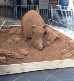 Boar sand sculpture found in Bradford Interchange