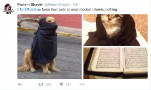 1 in 5 muslims c