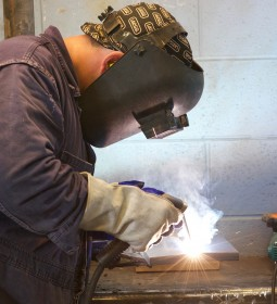 Apprenticeships are available in anything from engineering and boat building to veterinary nursing and accountancy.