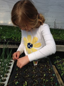 child-planting-seeds