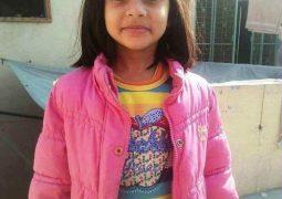 Pakistan's CM of Punjab formally announces the arrest of suspected killer in Zainab Ansari murder case.