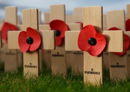 Poppies: To wear or Not to Wear?